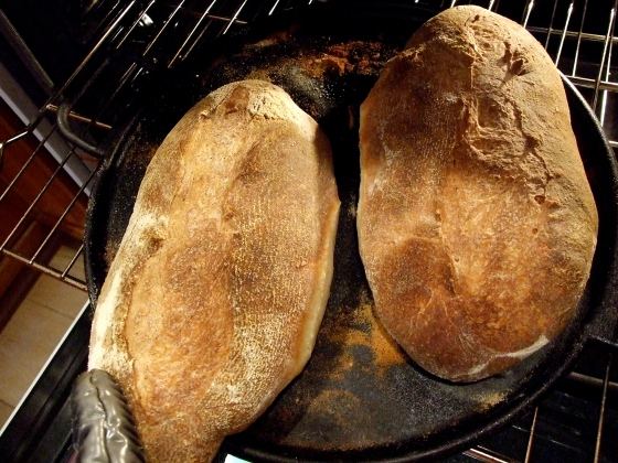 Out they come, crusty toasty brown loaves