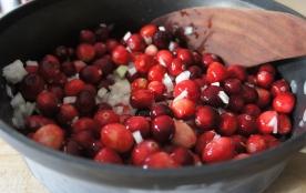 Cranberry ketchup