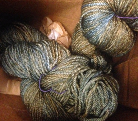 brooklyn, general, store, florriemarie, floma, knitting, local, yarn, store, lys, wilma, jean, chicken, smith, canteen, caroll, street, caroll, gardens, brownstone, knit, quilting, shopping, madeline, tosh, dk, merino